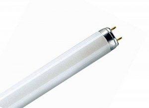 10x Osram Star lumière/lampe fluorescente Tube néon t8Fluorescent 15W 4000K 1150LM [Classe énergétique B] de la marque Unbekannt image 0 produit