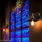 12x Ampoule vintage rétro Old Fashioned Style Edison à vis E27ST6419ancres 60W 220V–Cage d'écureuil Filament de tungstène Verre antique lampe [Classe énergétique D] de la marque INT image 2 produit