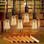 6×Neverland E27 40W Edison Rétro Lampe Antique Vintage Incandescence Ampoules Poire à cage d'écureuil Filament 50V-240V ST64 de la marque Neverland image 3 produit