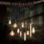 6pcs of Wootly Tungstène Edison Ampoule Coloration Ambrée Incandescence Verre Antique Lampe, ST64 40W Straight Wire, E27, 220V, Lumière Chaude de la marque Wootly image 4 produit