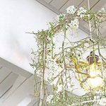 6W Ampoule LED Filament E27 ST64, Equivalent à Ampoule Incandescente 60W, Ampoule Rétro Edison, 800LM 2700K Blanc Chaud, Non-dimmable, Lot de 6, LVWIT de la marque LVWIT image 3 produit