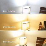 6W Ampoules LED E27 Dimmable A19 / A60 Ampoules basse consommation, Ampoule à économie d'énergie, LED Filament Ampoule à lampe, Blanc Chaud, ø60mm (4-pack) de la marque Suncentech image 4 produit