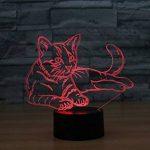Ahat Chat 3D Visualisation Bulbling Chambre Lumière / Illusion Optique Lampe de Bureau / Lumineux Transparent Acrylique LED Lampe de Table pour Chambre à coucher Chambre à coucher Décor / Holiday cadeau d'anniversaire, Touch-Control USB-Charging avec base image 3 produit