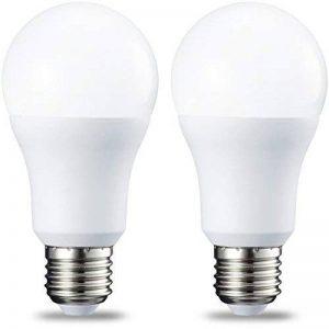 AmazonBasics Ampoule LED E27 A60 avec culot à vis, 10W (équivalent ampoule incandescente 75W), blanc froid - Lot de 2 de la marque AmazonBasics image 0 produit