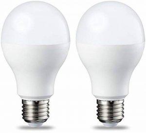 AmazonBasics Ampoule LED E27 A60 avec culot à vis, 14W (équivalent ampoule incandescente 100W), blanc chaud, dimmable - Lot de 2 de la marque AmazonBasics image 0 produit