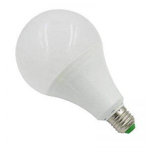 ampoule 24v 15w TOP 9 image 0 produit