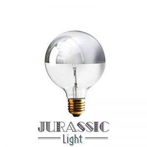 Ampoule calotte argentée globe 95MM de la marque Jurassic Light image 0 produit