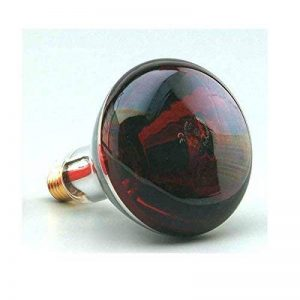Ampoule à chaleur infrarouge à vis 250 W E27 220-240 V Lumière rouge Émet de la chaleur de la marque F BRIGHT image 0 produit
