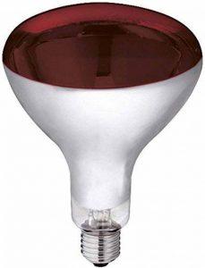 ampoule chauffante TOP 2 image 0 produit