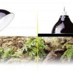 ampoule céramique TOP 0 image 1 produit