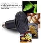 ampoule céramique TOP 6 image 4 produit