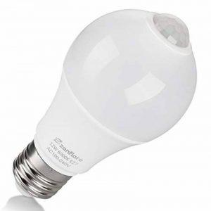 Ampoule Detecteur de Mouvement, Zanflare 12W E27 Ampoule LED Capteur PIR Infrarouge, Auto On/Off, Eclairage pour Escalier, Garage, Couloir, Passerelle, Jardin,cave, Passerelle. (1 PACK) de la marque Zanflare image 0 produit