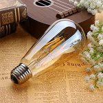 Ampoule E27 Vintage, Elfeland 6W Edison Ampoule LED Antique Filament Ambre Verre 2200K 600LM Dimmable Lumière Blanc Chaud Parfait pour Nostalgie et L'éclairage Rétro Modèle ST64 de la marque Elfeland image 2 produit