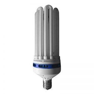 Ampoule eco star cFL une bonne croissance 6400 k, E40 125 wattsW de la marque ADVANCED STAR image 0 produit