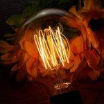 ampoule filament carbone longue TOP 6 image 1 produit