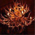 ampoule flamme TOP 12 image 4 produit