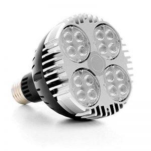 Ampoule horticole LED - 30W - SpectraBULB X30 LEDs OSRAM - Croissance et floraison - E27 - Simple à utiliser, ultra performante sur 40cm x 40cm de la marque BloomLED image 0 produit