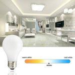 ampoule incandescente classique TOP 10 image 2 produit