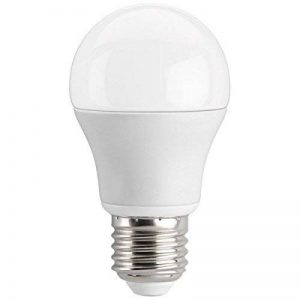 ampoule led 12 volts e27 TOP 1 image 0 produit