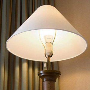 ampoule led 4000 lumens TOP 1 image 0 produit