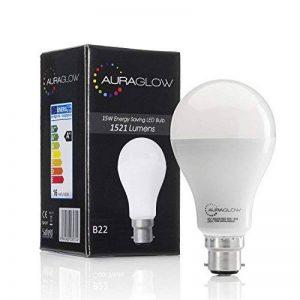 ampoule led b22 15w TOP 1 image 0 produit