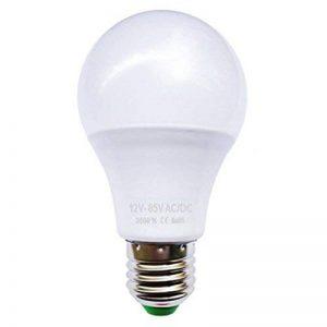 Ampoule LED bulbe E27, 6W 12V-24V AC/DC, blanc chaud 3500°K de la marque Ohm-Easy LED Lighting image 0 produit