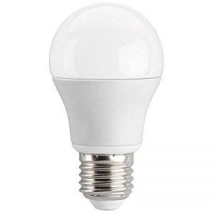 Ampoule LED bulbe E27, 7W 12V-24 VDC, blanc neutre de la marque Ohm-Easy LED Lighting image 0 produit
