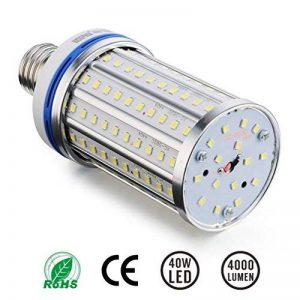 Ampoule LED de 40W lumière en maïs, Une efficacité énergétique WOOPHEN de plus de 4000 Lumen, Lumière du jour parfaitement blanche pour la rue et l'éclairage public, A base de visses moyens de type E27, Excellente lumière LED pour l'intérieur, les cours, image 0 produit