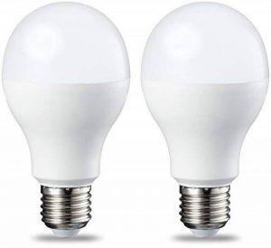 ampoule led dimmable e27 100w TOP 10 image 0 produit