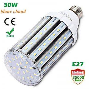 Ampoule led E27 30W 3000K, Wenscha lampe de maïs led puissant idéal pour garage, atelier,séjour, terrasse, applique murale, etc. (blanc chaud) de la marque Wenscha image 0 produit