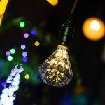 Ampoule LED E27 Edison Ampoule Vintage Diamant 1.3W Basse Consomation Éclairage Décoration Lumières Rétro pour Décoration de Chambre Fêtes Café Boutique Intérieur Blanc Chaud de la marque O'BLACK image 4 produit