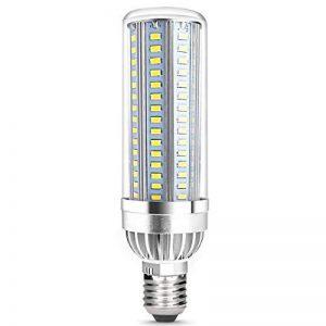 Ampoule LED E27 Lampe Led 25W équivalent 250W avec E40 Adaptateur 2500 Lumen Blanc Froid 6500K Super Brillant Ampoule Blanc Froid Eclairage Led maïs Cob 360° Larges Faisceaux de la marque AWE-LIGHT image 0 produit