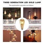 Ampoule LED Edison,Samione Lampe Décorative Ampoules à incandescence Rétro Edison Ampoule Antique Lampe 6 Pack [Classe énergétique A++] de la marque Samione image 2 produit