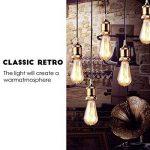 Ampoule LED Edison,Samione Lampe Décorative Ampoules à incandescence Rétro Edison Ampoule Antique Lampe 6 Pack [Classe énergétique A++] de la marque Samione image 3 produit
