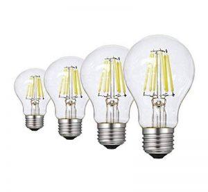 Ampoule LED Filament E27 A60, RANBOO, 6W Equivalent à Ampoule halogène 60W, 600LM Blanc Froid 6500K, Ampoule Vintage LED, Ampoule LED Standard Filament, Non Dimmable, Lot de 4 de la marque RANBOO image 0 produit