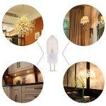 ampoule led pour remplacer halogène TOP 11 image 4 produit
