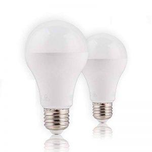 Ampoule LED Standard Culot E27, Awenia Lighting A65 18W - Equivalence incandescence 120W, Blanc Chaud 3000K, 1901lm, lot de 2 [Classe énergétique A+] de la marque Awenia image 0 produit