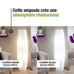 ampoule lexman e14 TOP 6 image 3 produit