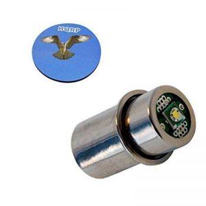 ampoule maglight TOP 12 image 0 produit