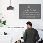ampoule plafond TOP 8 image 1 produit