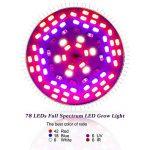 ampoule plein spectre TOP 7 image 2 produit