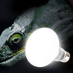 ampoule pour couveuse TOP 7 image 0 produit