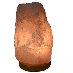 ampoule quartz TOP 11 image 0 produit