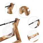 ampoule verre TOP 10 image 2 produit