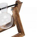 ampoule verre TOP 10 image 4 produit