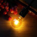 Ampoule Vintage, Elfeland 6x E27 4W Ampoule Filament LED Ampoule Edison Lumière Décorative 2200K 400LM Idéal pour Nostalgie et l'éclairage Rétro Blanc Chaud Modèle G80 & ST64(Non Dimmable) de la marque Elfeland image 4 produit