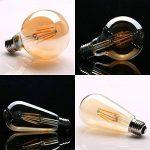 Ampoule Vintage, Elfeland 6x E27 4W Ampoule Filament LED Ampoule Edison Lumière Décorative 2200K 400LM Idéal pour Nostalgie et l'éclairage Rétro Blanc Chaud Modèle G80 & ST64(Non Dimmable) de la marque Elfeland image 2 produit