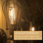 ampoules à filament design TOP 14 image 3 produit