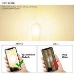 Ampoules Filament LED ST64 4W (=40W), 470Lm Blanc Chaud 2700K, Non-dimmable, Vintage Rétro Décoration, 6 Paquets, ANWIO de la marque ANWIO image 3 produit