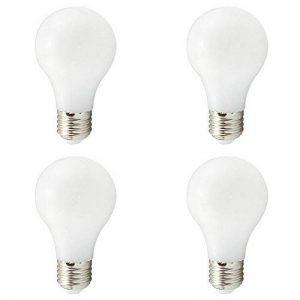 Ampoules LED A19 E27, basse tension DC 12V-24V 4W, lampe à énergie solaire A60,40W Equivalent lumière traditionnelle, 400Lumen 360 degrés pour RV Camper Marine, blanc chaud 3000K, lot de 4 de la marque weixuan image 0 produit